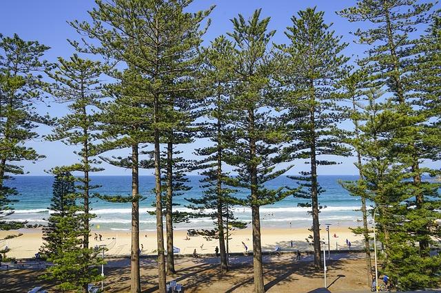 manly 2886730 640 - シドニーに行こう!基本情報、行き方、観光地、留学、ワーホリまで徹底解説!