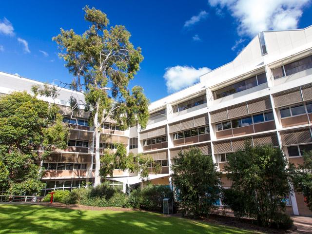 13308 - オーストラリアで単位認定留学!先輩達おすすめの語学学校ベスト5