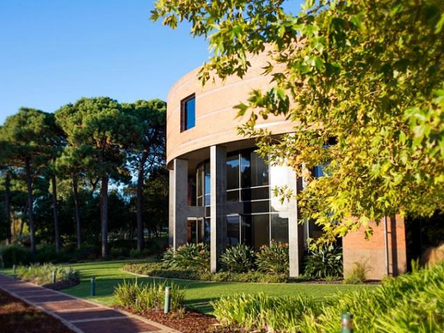15133 - オーストラリアで単位認定留学!先輩達おすすめの語学学校ベスト5