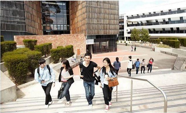 15180 e1566297549326 - オーストラリアで単位認定留学!先輩達おすすめの語学学校ベスト5