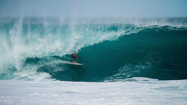 surf 1245757 640 - バイロンベイの語学学校一覧