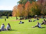 13860 150x112 - オーストラリア進学英語コースの概要とおすすめ留学プラン